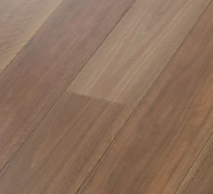 Spotted Gum Smooth 10% Matte