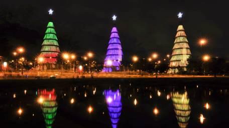 2013-12-21_PT-BR8528049456_C381rvores-de-Natal-iluminam-o-lago-no-Parque-do-Ibirapuera-em-SC3A3o-Paulo