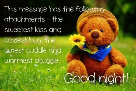 Top 100+ Good Night Cuddle Images Gif - HD Greetings Images