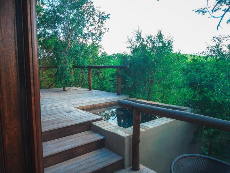 Phinda Mountain Lodge   KwaZulu Natal   South Africa   Luxury Safari   Luxury Hotels   Luxury Lodges #travel #travelblog #southafrica #safari #africa