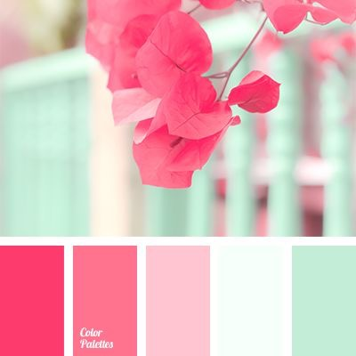 Planning Palette | No. 2