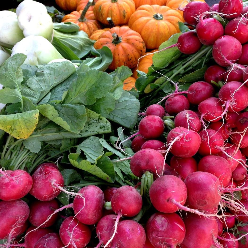boerenmarkten