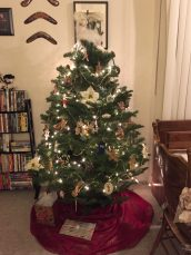 A full sized live tree in a little apartment.