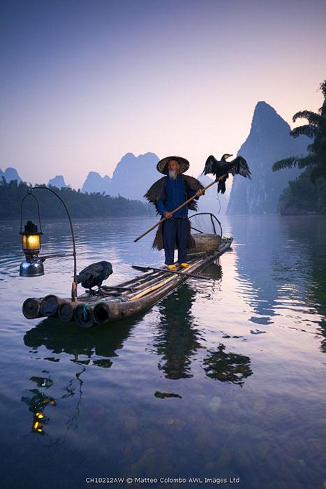China, Guanxi, Yangshuo. Old chinese fisherman at sunrise on the Li river, fishing with cormorants (MR)