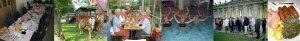 Collage mit Aktivitäten