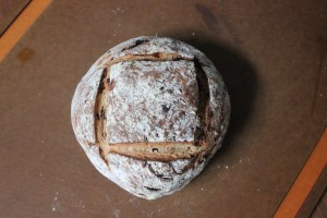 Whole Wheat Raisin Rosemary Boule