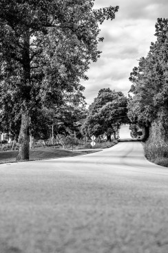 Day 20 Backroads:streets