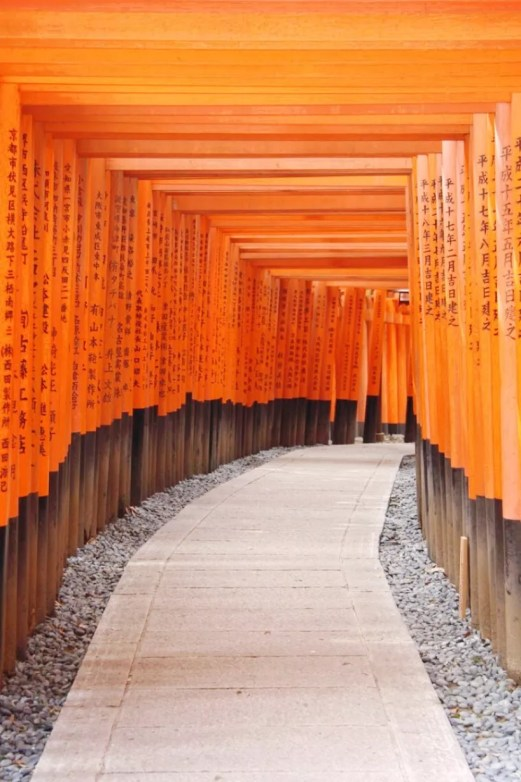 backpacking-japan-kirschblute-reiseroute-fushimi-inari-schrein