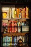 The beloved bookshelf