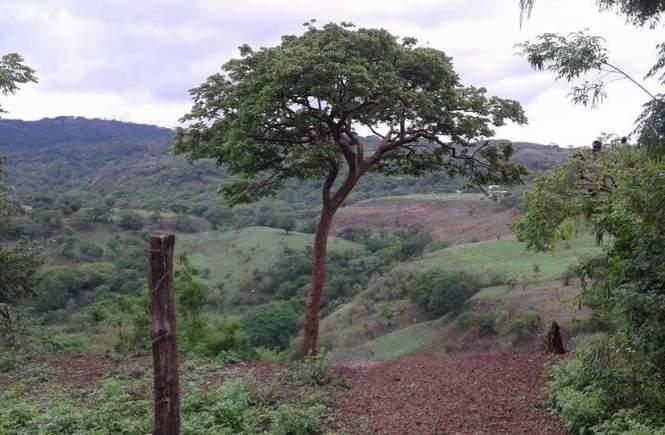 wrong in Nicaragua