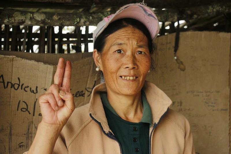 venlig kineser