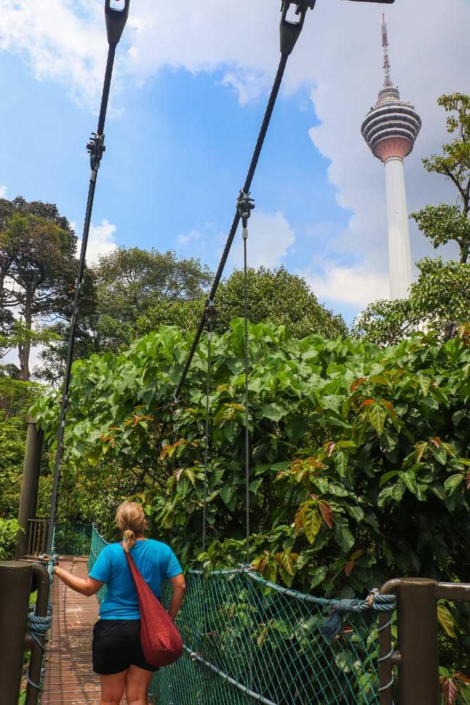 Bukit Nanas/KL Forest Eco-park