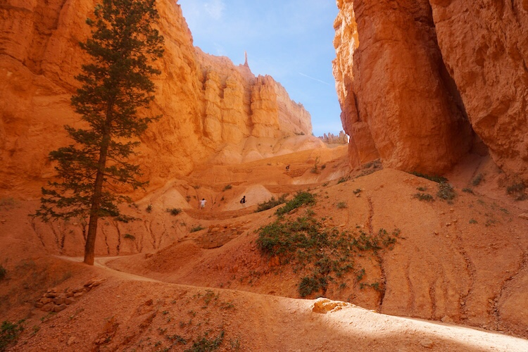 Bryce Canyon Photo Diary_Tips_10