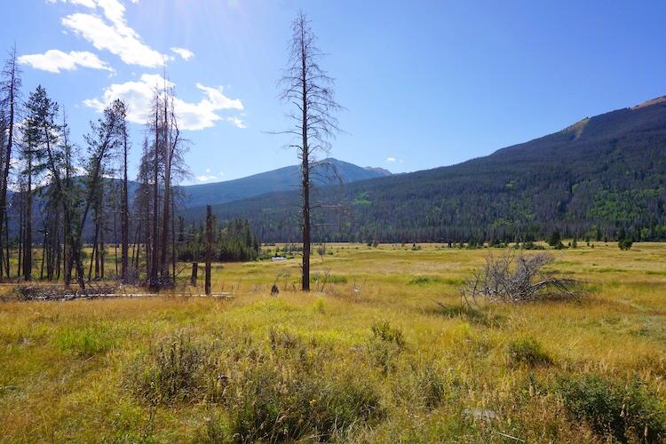 Colorado Photo Diary_7