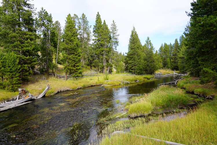 Yellowstone National Park Photo Diary 6
