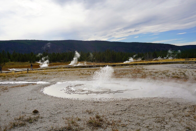Yellowstone National Park Photo Diary 8