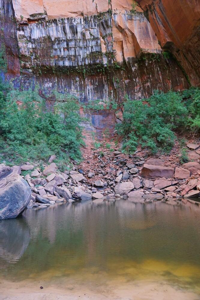 Zion National Park_Photo Diary 6