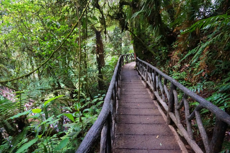 Exploring Costa Rica with Marbella Tours_10