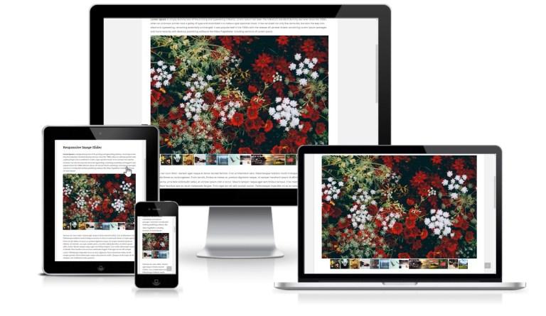 Responsive Slider Gallery WordPress Plugin