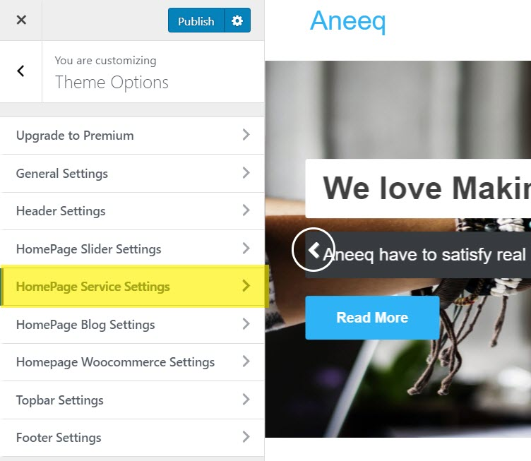 aneeq-wordpress-theme-homepage-service-settings