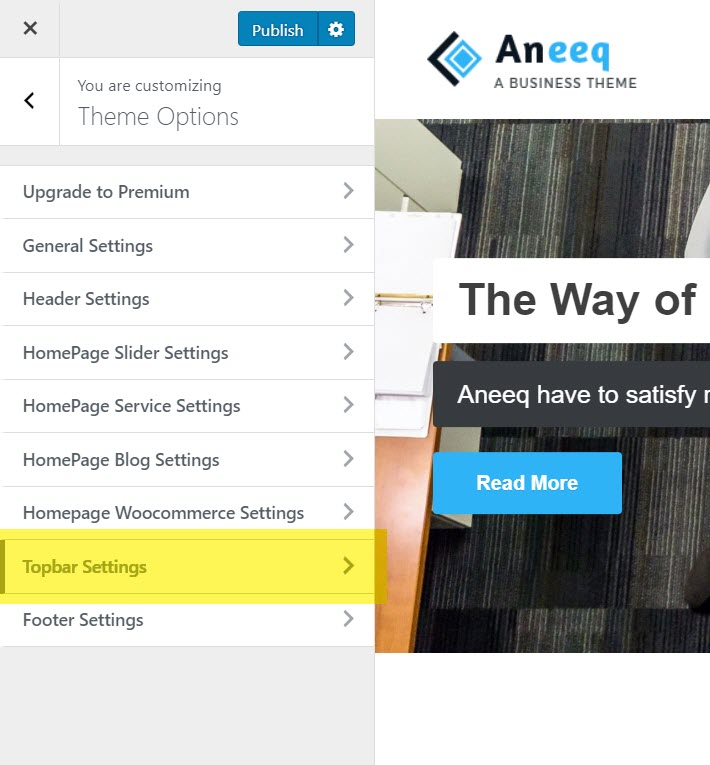 aneeq-wordpress-theme-homepage-topbar-settings