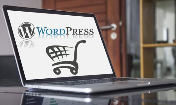 Why is WordPress not such a good E-commerce Platform
