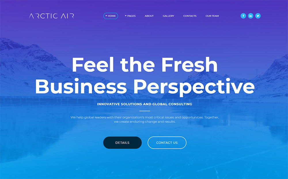 Arctic-Business-Startup-Moto-CMS3-Template