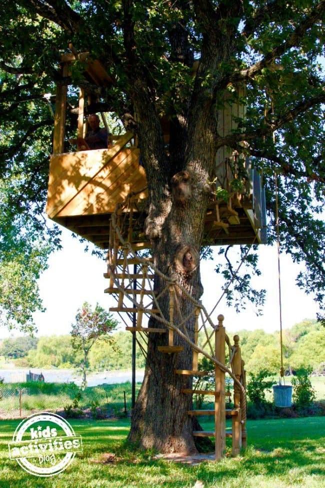 Amazing Backyard Tree House Getaways Salter Spiral Stair   Spiral Staircase Around Tree Trunk   Treehouse Masters   Ter Kulve   Canopystair   Robert Mcintyre   Wooden Stairs