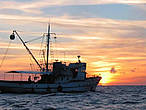 A tuna fishing vessel © WWF