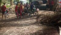 4 Perambah Hutan Cagar Biosfer di Riau Ditangkap