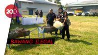 Bea Cukai Lhokseumawe Musnahkan 70 Ton Bawang Ilegal Asal Thailand