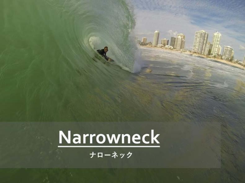 Narrowneck