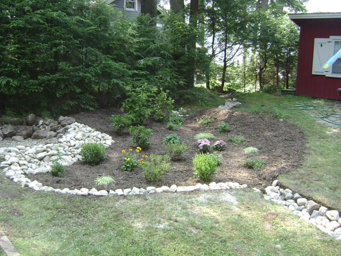 After: Rain Garden