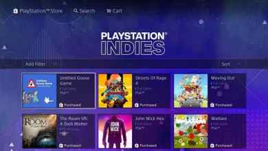 Sony PlayStation Indies