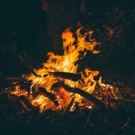 The Best Firewood to Burn Indoors & Outdoors