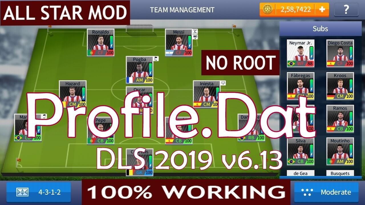 File4Net original Profile dat file for DLS 2019  [Direct Download