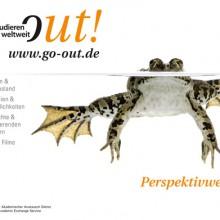 Frosch - Perspektivwechsel!