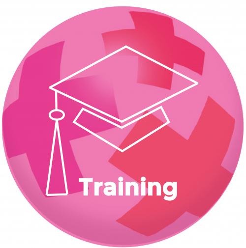 Training Team Talenten (Belbin)