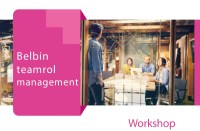 Q Belbin Workshop Marijn Dane Axis Consultancy