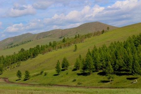 Altipiani mongoli.