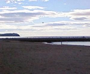 大砂海岸?