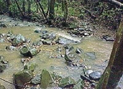この川を渡れ。
