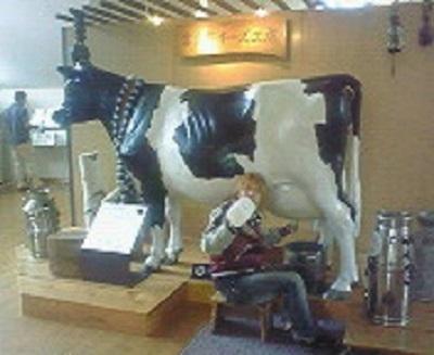 富良野チーズ工房にて。