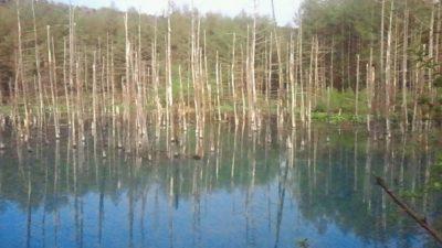 2011/ 5/27 17:12 美瑛青い池