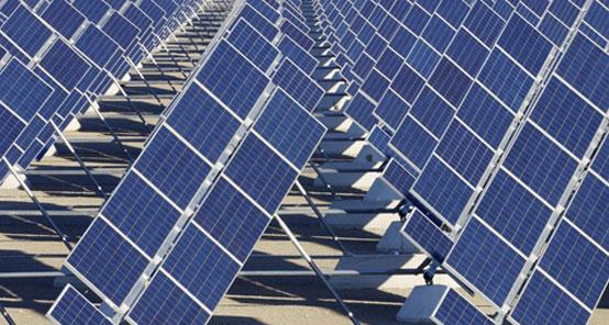 Empresas crean alianza ecológica de innovación fotovoltaica abierta