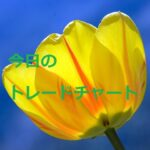 FX 昨日のトレードチャート USDJPY  7/5