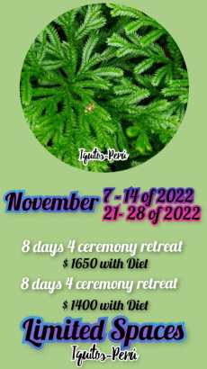 November of 2022