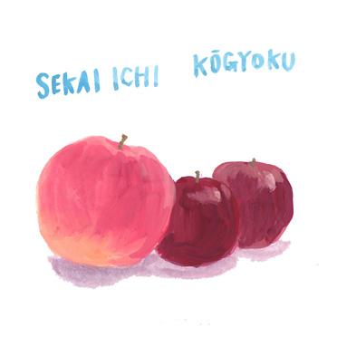 りんご 世界一 紅玉