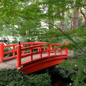 架け橋 a bridge