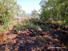 The top of Wangi Falls - a not very impressive trickle of a stream during the dry season